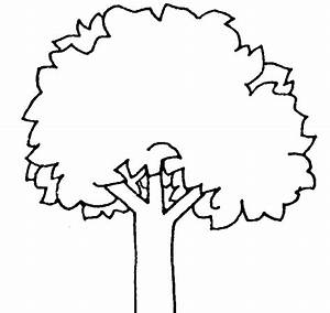 Apple Clipart Family Tree Pencil And In Color Apple