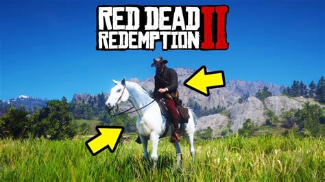 rdr2 horse dead location redemption