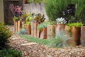 52 succulent garden designs garden designs design trends for Succulent garden designs