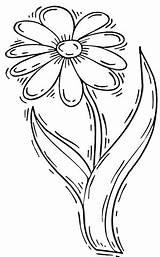 Daisy Coloring Flower Drawing Margareta Margherita Colorare Disegni Kolorowanki Colorir Margarida Stem Desenho Stokrotka Disegno Stampare Colorat Druku Desenhos Margherite sketch template