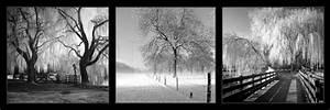 Tableau Photo Noir Et Blanc : beautiful tableaux en noir et blanc 10 tableau homeezy ~ Melissatoandfro.com Idées de Décoration