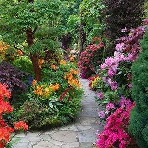 cliserpudo: Beautiful Flower Garden Path Images