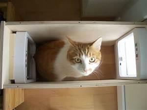 Katzenklappe Für Fenster : meow die katzenwelt von stitch sancho pooh sternchen kyra alles f r die katze ~ Eleganceandgraceweddings.com Haus und Dekorationen