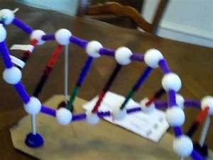 Zach's DNA Project - YouTube