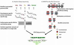Genes | Free Full-Text | Next Generation Sequencing ...