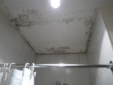 schwarzer schimmel im bad heruntergekommen und schwarzer schimmel im ganzen bad vintage hostel bilder tripadvisor