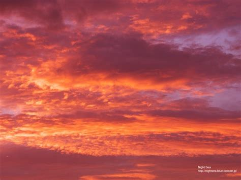 colored clouds 201 best images about coral salmon shell pink on