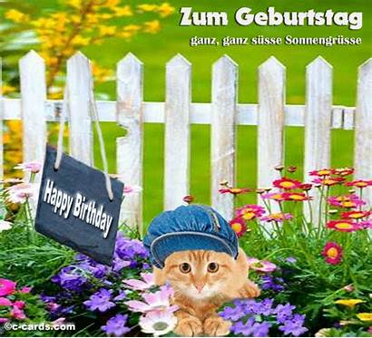 German Birthday Greetings Cards Ecards Card Greeting