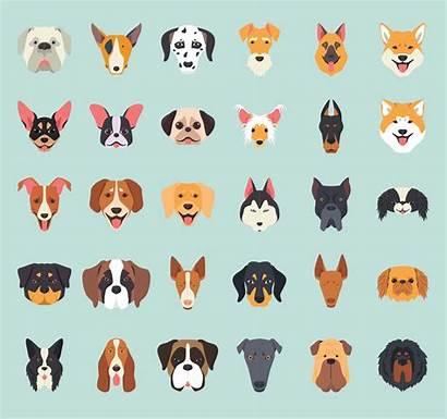 Dog Breeds Icons Ai Icon Pet Flyers
