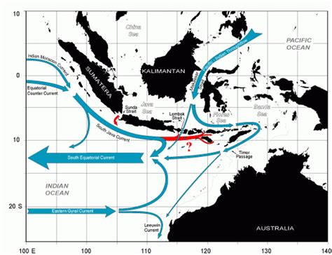 diving indonesia bali   indonesian throughflow