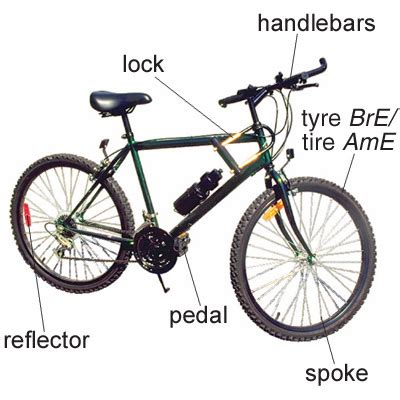 Spoke  Meaning Of Spoke In Longman Dictionary Of