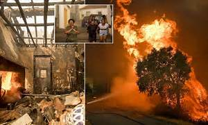 Wildfires send residents fleeing in Portugal | Daily Mail ...