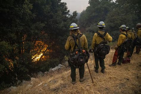 august complex fire  largest wildfire  california