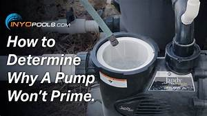 How To  Determine Why A Pool Pump Won U0026 39 T Prime