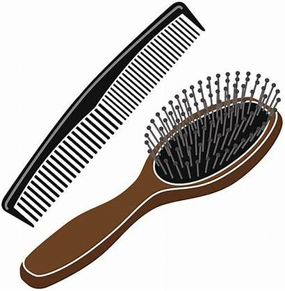 Comb Brush Clipart Hairbrush Combs Vector Clip