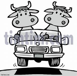 Cattle clipart cattle drive - Pencil and in color cattle ...