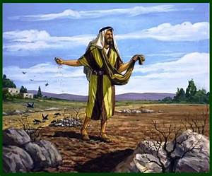 The, Parable, Of, The, Sower