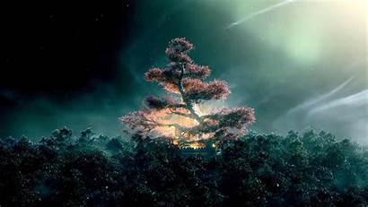 Shannara Chronicles Ellcrys Tree Wallpapers Tv Elves