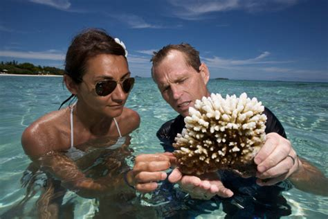 9: Marine Biologist - 10 Jobs That Will Take You on Wild ...