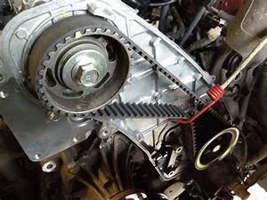 Belts  U0026 Chains