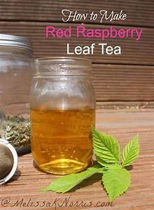 red raspberry leaf tincture benefits
