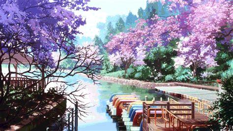 Wallpaper Gerak Bunga Sakura Pexels