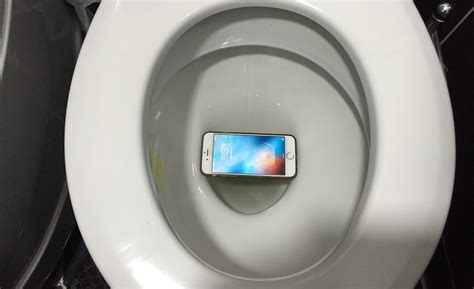 what to do if you drop your iphone in water dropped iphone in toilet or water here s how to save it