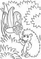Hedgehog Cute Drawing Coloring Pages Getdrawings Little sketch template