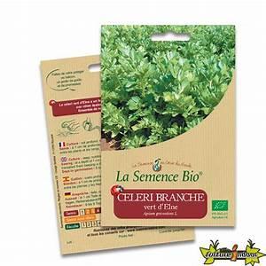 Celeri Branche Culture : graines bio celeri branche vert d 39 elne 250gn graines ~ Melissatoandfro.com Idées de Décoration