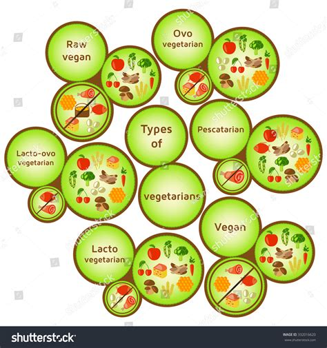 lacto vegetarian vegetarian types infographic variety diets raw stock illustration 332016620 shutterstock