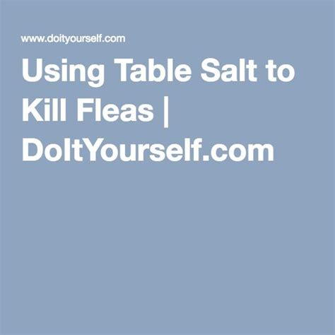 Salt For Fleas On Hardwood Floors by Kill Fleas Carpet Salt Images Bugs Bedroom Decorating