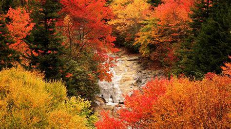 Autumn Backgrounds Desktop PixelsTalk Net