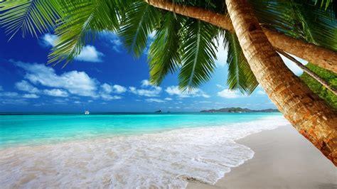 playas tropicales  hd fotosdelanaturalezaes