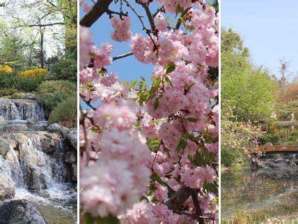 Japanische Gärten Wien by Fern 246 Stliche Gartenkunst Mitten In Wien Parks In Wien