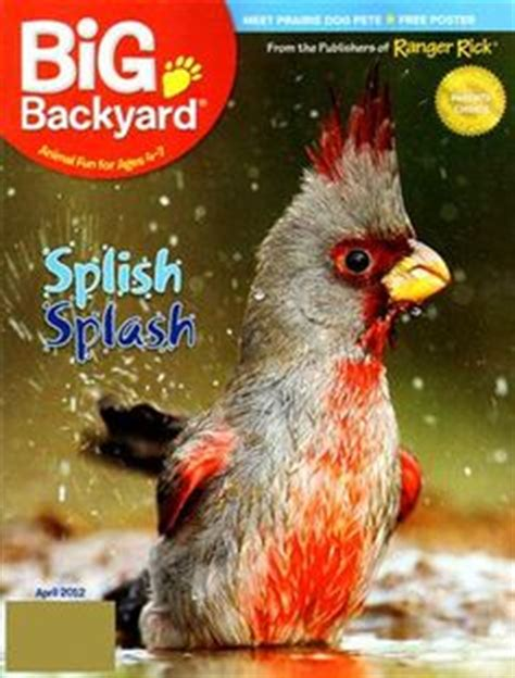 my big backyard magazine subscription 1000 images about childrens magazines on pinterest sports illustrated kids national