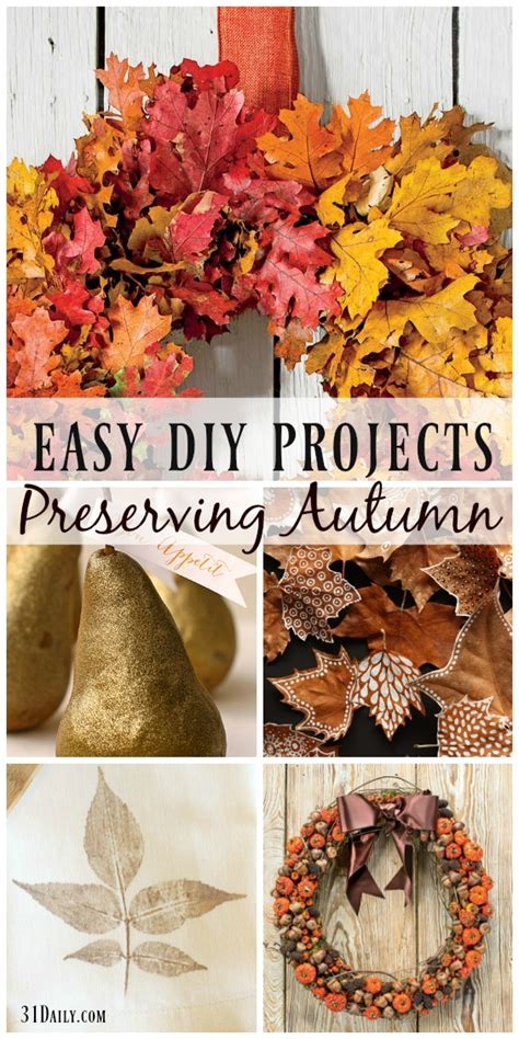 Preserving The Harvest With Easy Fall Diy Projects  31 Daily