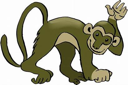Monkey Clip Clipart Sloth Climbing Spider Transparent