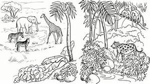 Realistic Jungle Animals Coloring Pages