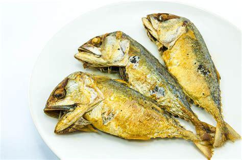 types  fish   eat    avoid