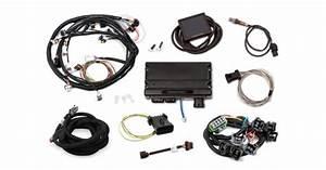 Holley Terminator X Mpfi Kit For Ford V8 302  Windsor