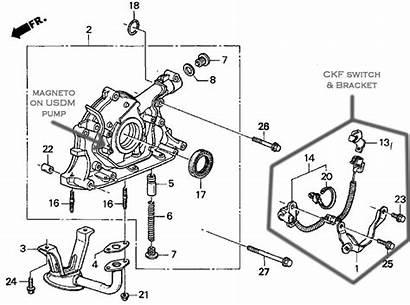 Diagram Oil Honda Pump 1058 Nhbp Surgery