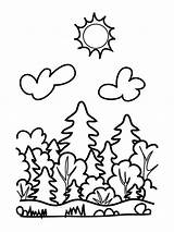 Forest Coloring Pages Simple Colouring Printable Nature Print Craft Divisions Supplies Play Children sketch template