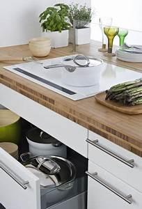 Plaque De Cuisson Induction Blanche : plaque induction blanche sur plan de travail bois kitchen ~ Melissatoandfro.com Idées de Décoration