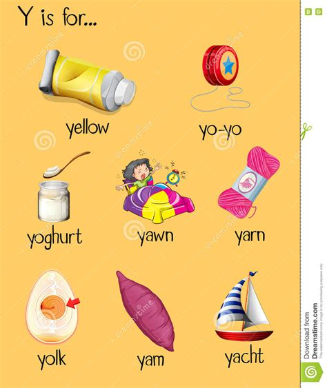 many words begin with letter y stock vector illustration 456 | many words begin letter y illustration 75242814