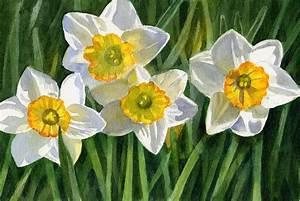 Four Small Daffodils by Sharon Freeman