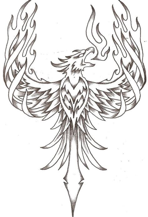 phoenix coloring pages  adults  getcoloringscom  printable colorings pages  print