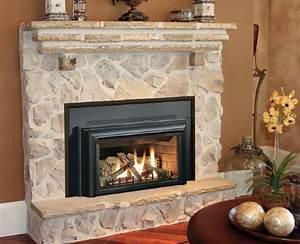 Fireplace Insert 2 Way On Custom