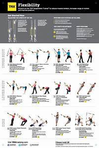 trx exercises | TRX All Body Workout stretching tips ...