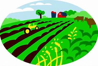 Clipart Agriculture Farm Farmland Crops Crop Cliparts