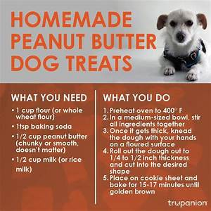 1000+ images about Pet Food and Treat Recipes on Pinterest